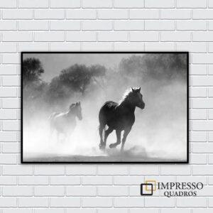 Cavalo Cinza